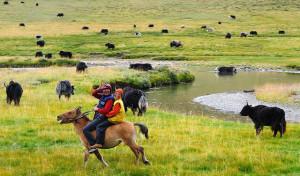 Los nómades tibetanos